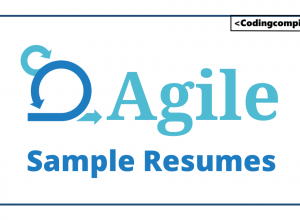Agile Sample Resumes