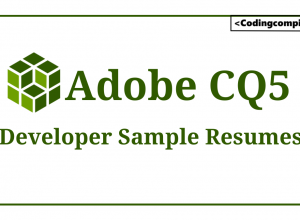 Adobe CQ5 Developer Resume